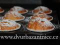 DSC_1149 w muffiny
