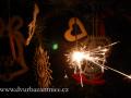 DSC_1623 w Bažantnice-vánoce