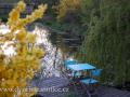 DSC_5616 w zahrada
