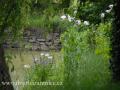 SPU_2269 w zahrada