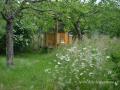 SPU_2918 zahrada+včely