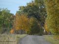 SPU_5909 sestička k domovu-podzim