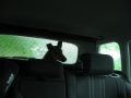 silueta D v autě - Věra