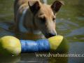 SPU_2749 w Donutka + vodní hračka