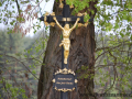 DSC_5846 w kříž