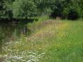 SPU_3399 w příroda
