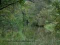 SPU_5282 w příroda