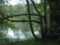 SPU_5312 w příroda