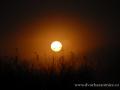 SPU_6291 w svítání