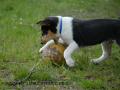 SPU_1183 w Etien+míč