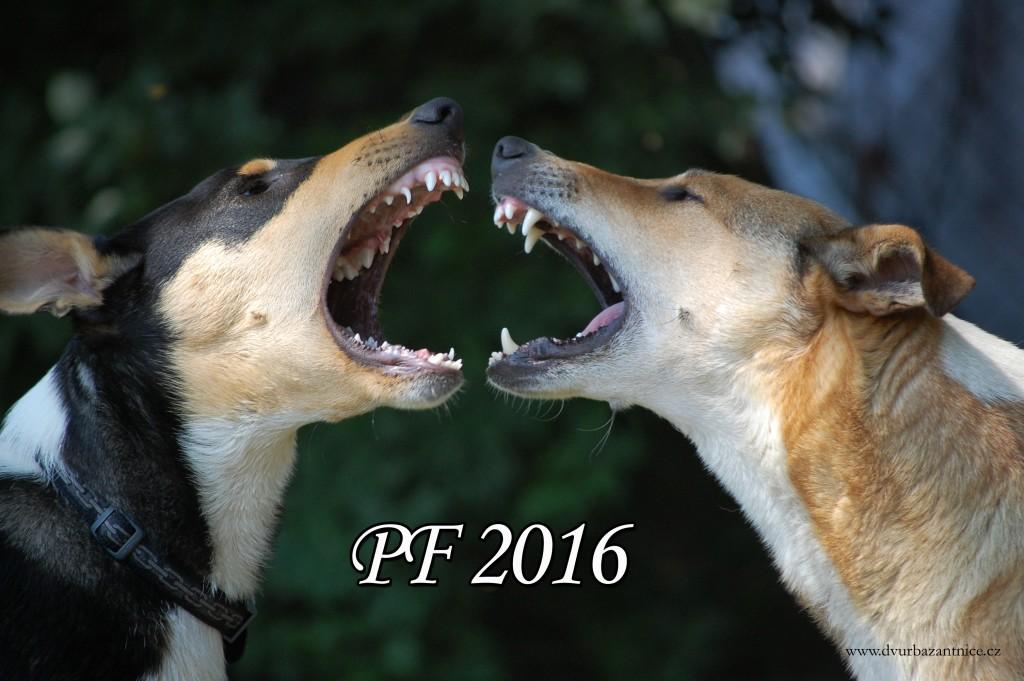 PF_2016 - 1.